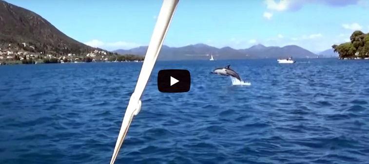 delfinia_nydri