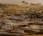 apolithomeno-dasos