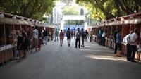 festival-vivlioy-zappeio 2