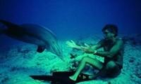 dolphin-man-i-sunarpastiki-istoria-tou-thrulikou-duti-zak-magiol 2