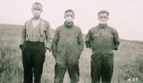 Sp-flu-alberta-field