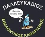 ethelontikos_katharismos_31_05_2020 2