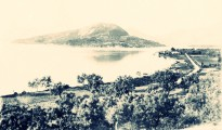 vlicho_1905